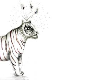 cropped-tiger-full-sat0-cutcut1500pix-half-1.png