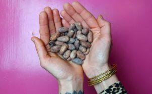 cacao-ayurveda-copyright-by-julia-wunderlich