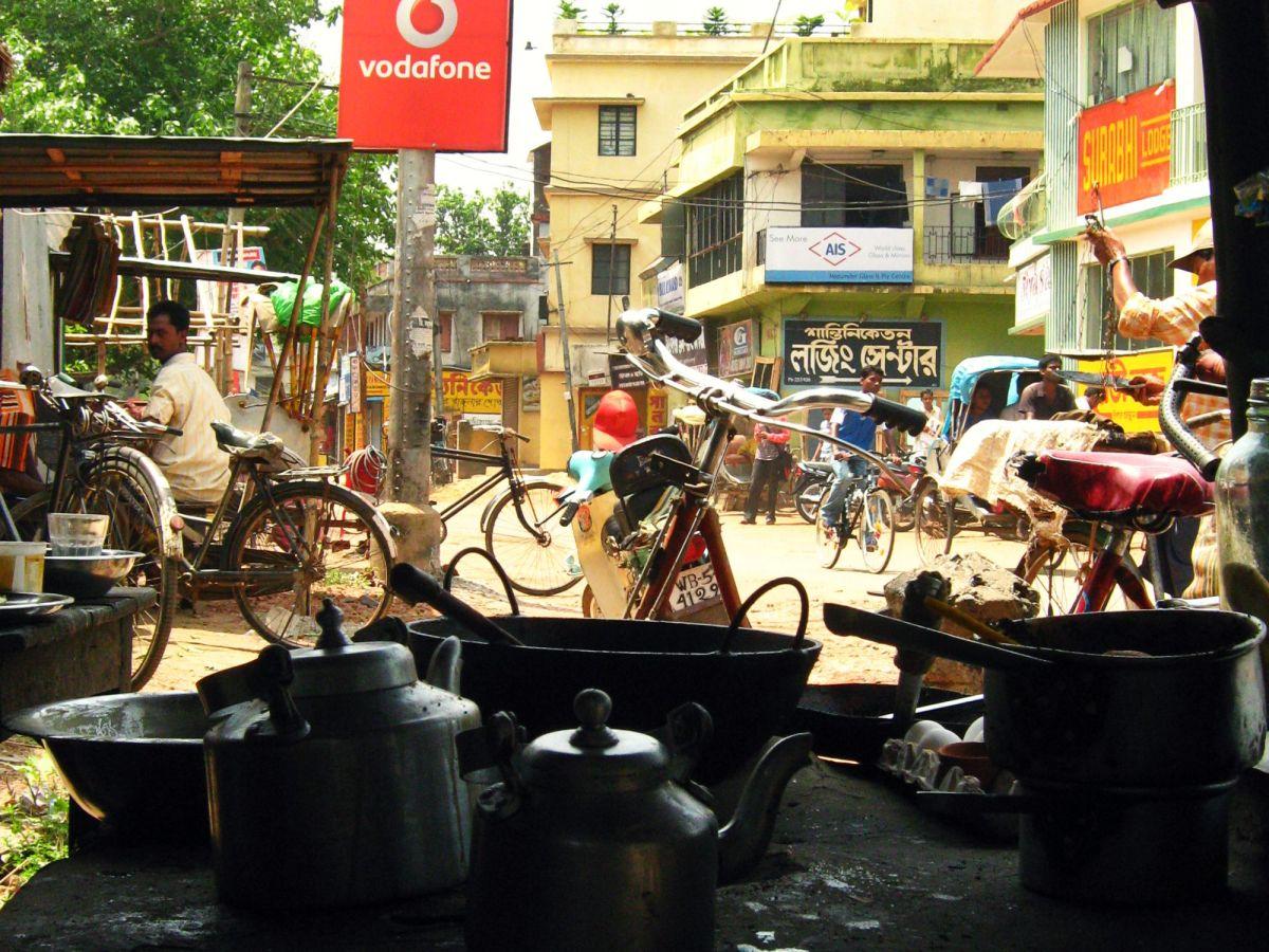 chai bengalen copyright julia wunderlich